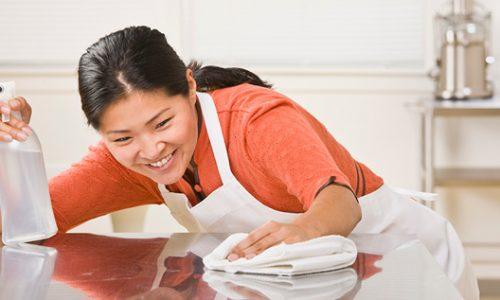 best-maid-agencies-singapore